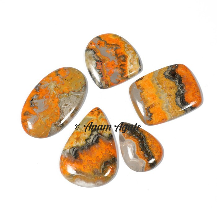 Bumble-Bee Gemstone Cabochons
