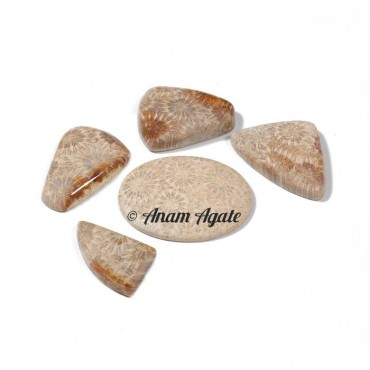 Fossil Coral Gemstone Cabochons
